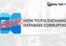 Fix Exchange Database Corruption